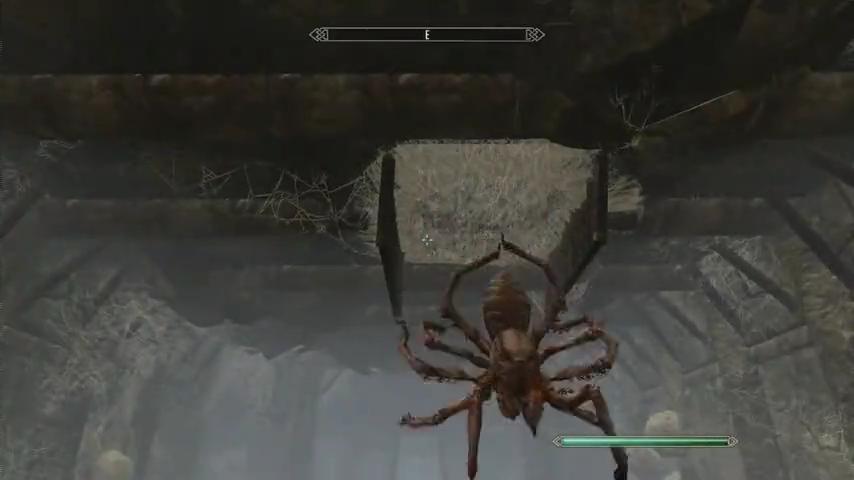 大蜘蛛も出てきます